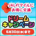 【JALマイラー最強】ドリームキャンペーン