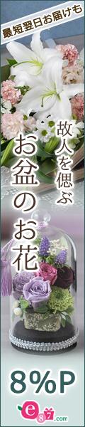 イイハナ・ドットコム(e87.com)